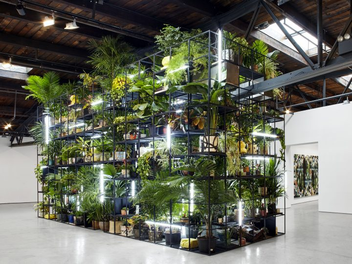 image of a large metal frame full of different plants and lights