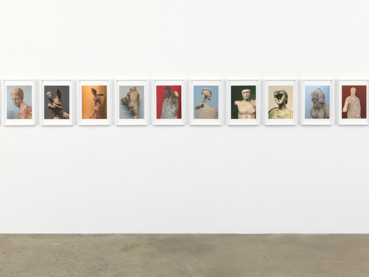 image of Rachael Harrison's Cropped Priapus, a series of images on the gallery wall