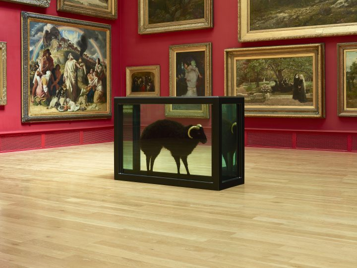 Sculpture by Damien Hirst which consists of a black sheep with golden horns placed inside a glass box. The sculpture is in a gallery with red walls.