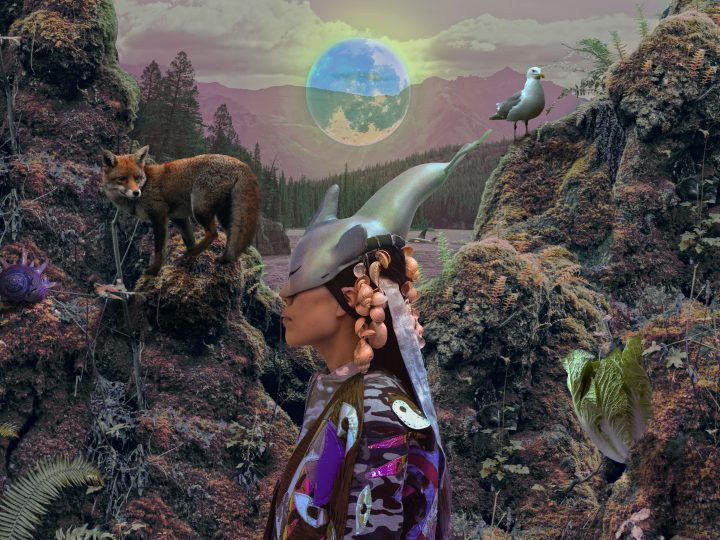 A woman wearing a headpiece with horns that covers half her face, stands sideways in a natural environment including a fox and a bird. The colours of the image are surreal and a larger moon hangs above the woman.